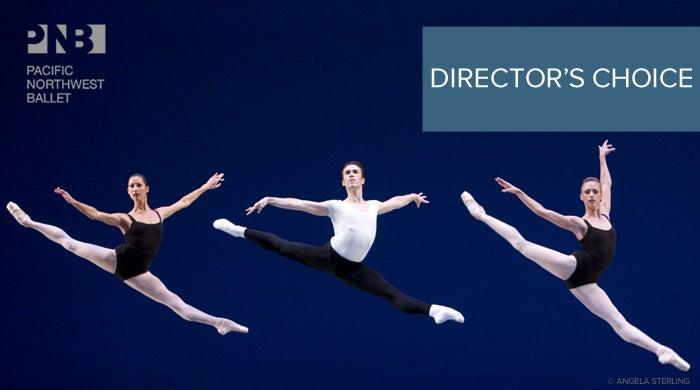 branding-DirectorsChoice2012