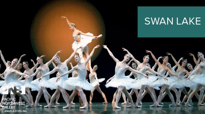 branding-SwanLake.jpg